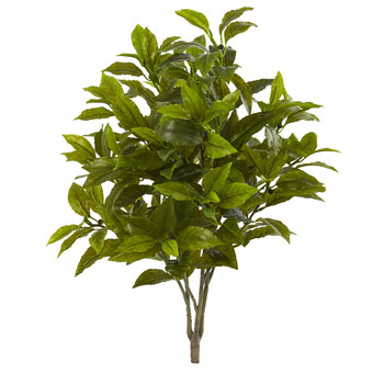 26 Coffee Leaf Artificial Plant Set of 2 Real Touch - SKU #6211-S2