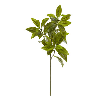 26 Coffee Leaf Artificial Plant Set of 12 Real Touch - SKU #6212-S12