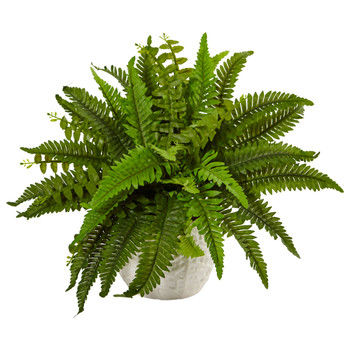 Boston Fern in White Planter - SKU #6308