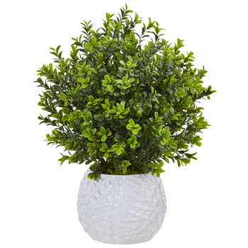 Boxwood in White Vase Indoor/Outdoor - SKU #6310