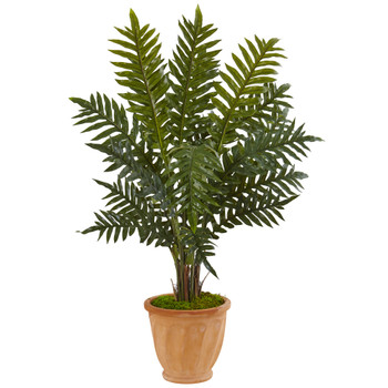 4 Evergreen Plant in Terracotta Planter - SKU #6317