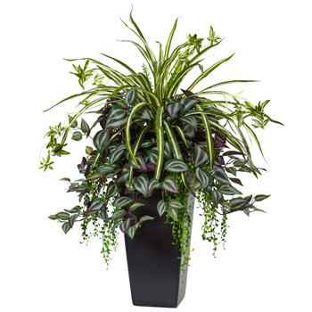 Wandering Jew and Spider Plant in Black Planter - SKU #6326