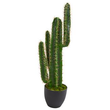 2.5 Cactus Artificial Plant - SKU #6328