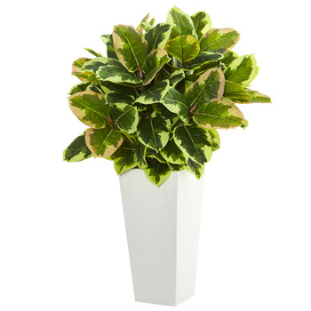 Variegated Rubber Artificial Plant in White Tower Planter Real Touch - SKU #6371