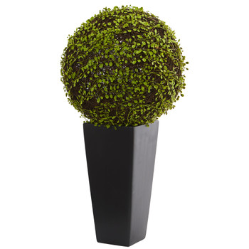 Mohlenbechia Ball Artificial Plant in Black Tower Vase - SKU #6396