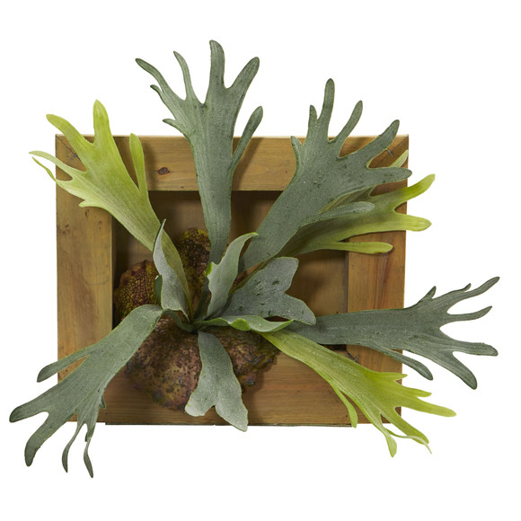 13 Staghorn Artificial Plant in Wood Hanging Frame - SKU #6423