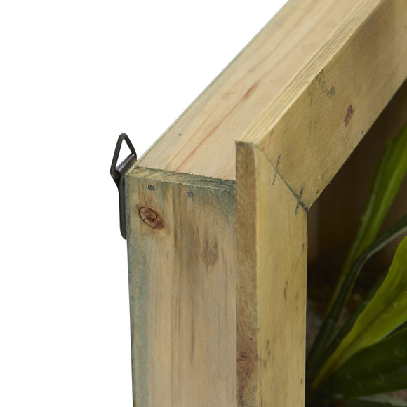 13 Staghorn Artificial Plant in Wood Hanging Frame - SKU #6423 - 1