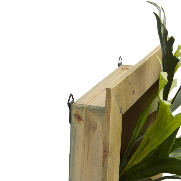 13 Staghorn Artificial Plant in Wood Hanging Frame - SKU #6423 - 2