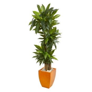 5.5 Dracaena Plant in Orange Square Planter Real Touch - SKU #6430