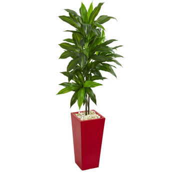 5 Dracaena Artificial Plant in Red Planter Real Touch - SKU #6435