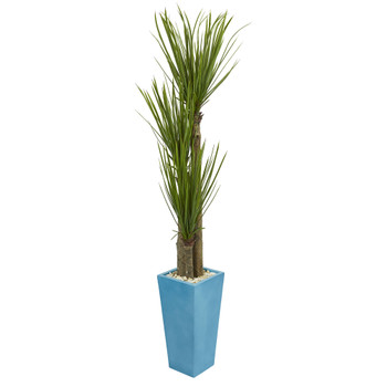 6 Triple Stalk Yucca Artificial Plant in Turquoise Planter - SKU #6440