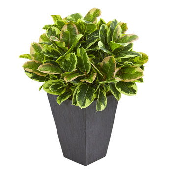 Variegated Rubber Artificial Plant in Slate Planter Real Touch - SKU #6497