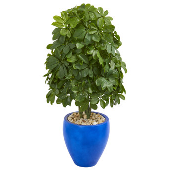 3.5 Schefflera Artificial Plant in Blue Oval Ceramic Real Touch - SKU #6498