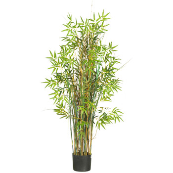 5 Bamboo Grass Silk Plant - SKU #6569