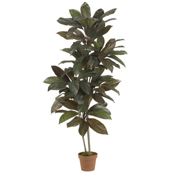 5 Cordyline Silk Plant Real Touch - SKU #6580