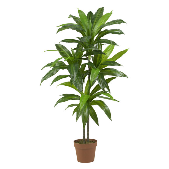 48 Dracaena Silk Plant Real Touch - SKU #6585