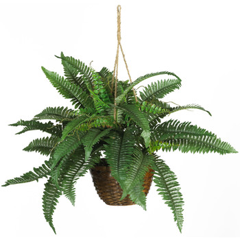 Boston Fern Silk Hanging Basket - SKU #6599