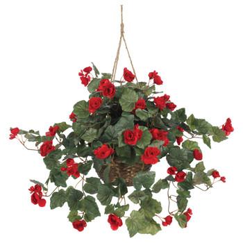 Begonia Hanging Basket - SKU #6616-RD