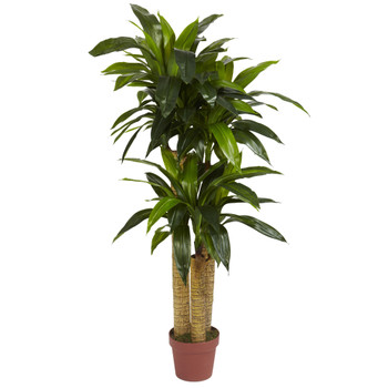 4 Corn Stalk Dracaena Silk Plant Real Touch - SKU #6648