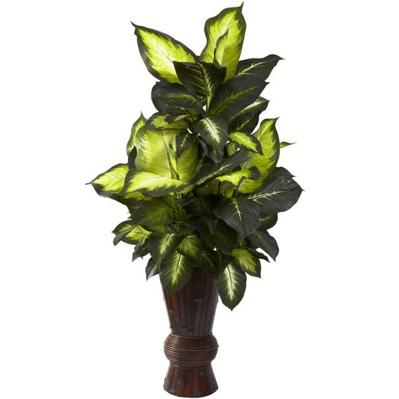 Golden Dieffenbachia w/Bamboo Planter - SKU #6724