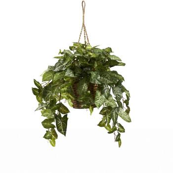 Nepthytis Hanging Basket - SKU #6738