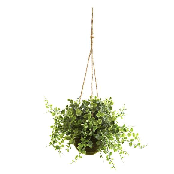 Eucalyptus Maiden Hair Berry Hanging Basket Set of 3 - SKU #6741-S3 - 1