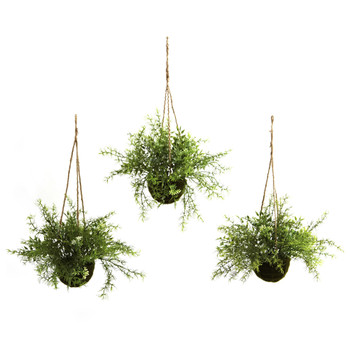 Ruscus Sedum Springeri Hanging Basket Set of 3 - SKU #6742-S3