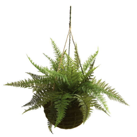 Leather Fern w/Mossy Hanging Basket Indoor/Outdoor Set of 2 - SKU #6743-S2 - 1
