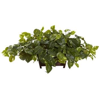 Pothos w/Rectangle Decorative Planter - SKU #6793