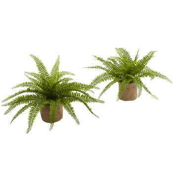 Boston Fern w/Burlap Planter Set of 2 - SKU #6814-S2