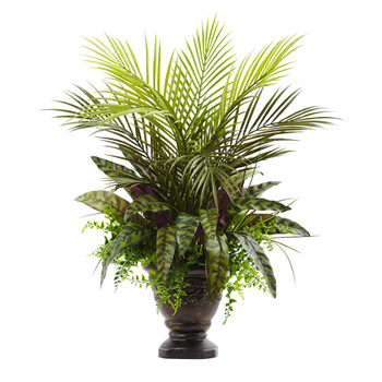 27 Mixed Areca Palm Fern Peacock w/Planter - SKU #6828