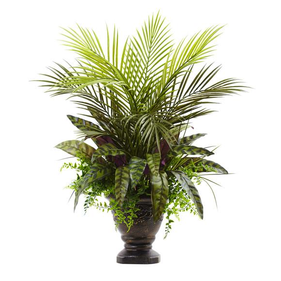27 Mixed Areca Palm Fern Peacock w/Planter - SKU #6828
