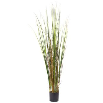 4 Grass Bamboo Plant - SKU #6829