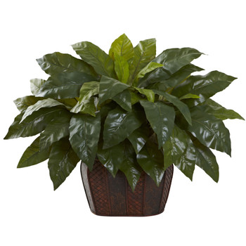 Giant Birdsnest Fern with Decorative Planter - SKU #6834