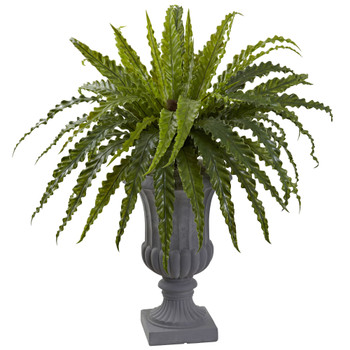 Birdsnest Fern with Urn - SKU #6837
