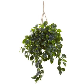 Pothos Hanging Basket UV Resistant Indoor/Outdoor - SKU #6844