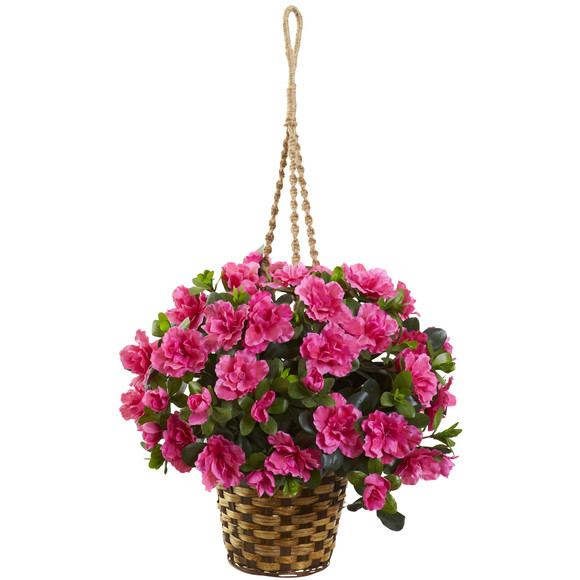 Azalea Hanging Basket - SKU #6848