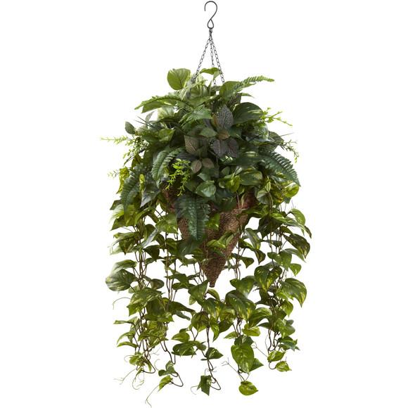 Vining Mixed Greens w/Cone Hanging Basket - SKU #6851