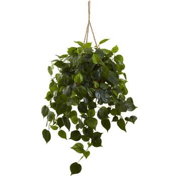 Philodendron Hanging Basket UV Resistant Indoor/Outdoor - SKU #6853