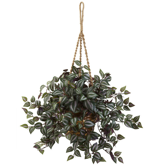 Wandering Jew Hanging Basket - SKU #6854