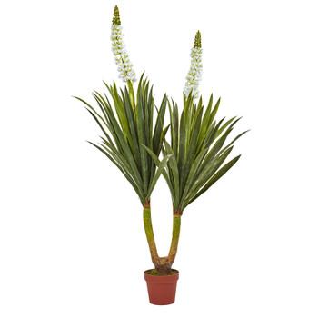 57 Flowering Yucca Plant - SKU #6864