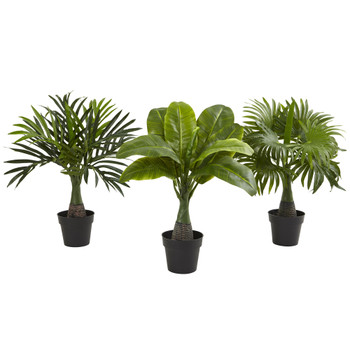 Areca Fountain Banana Palm Set of 3 - SKU #6867-S3