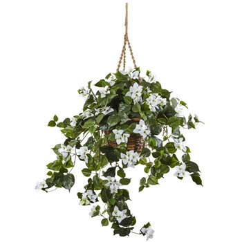 Bougainvillea Hanging Basket - SKU #6868-WH