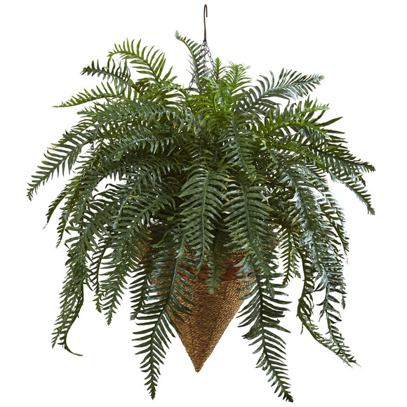 Giant River Fern with Cone Hanging Basket - SKU #6871