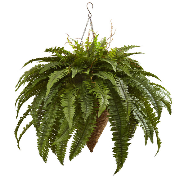 Giant Boston Fern with Cone Hanging Basket - SKU #6872