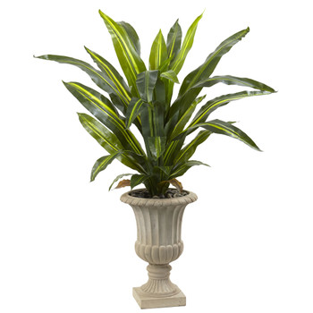 5 Dracaena Plant with Urn Real Touch - SKU #6878