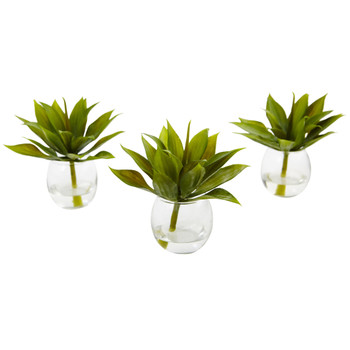 Agave Succulent with Vase Set of 3 - SKU #6888-S3
