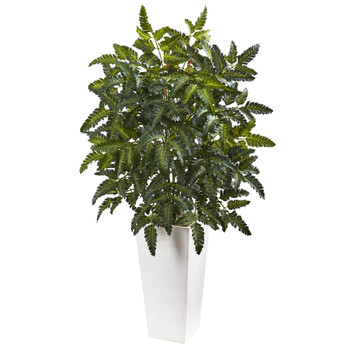 Bracken Fern with White Planter - SKU #6903