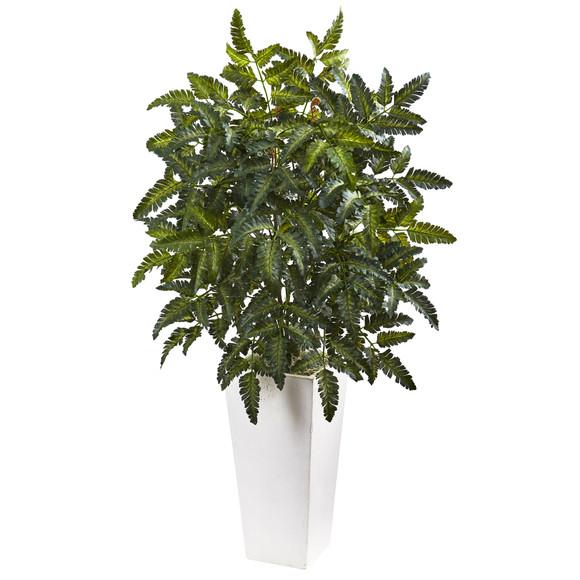 Bracken Fern with White Planter - SKU #6903
