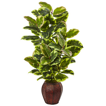 Rubber Plant with Planter - SKU #6909